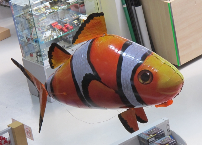 Flying Fish (Clownfish)