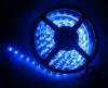 3528 Flexible 300 LED Strip light -W5MM x 5Meter (Blue)